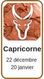 Horoscope 2019 Capricorne