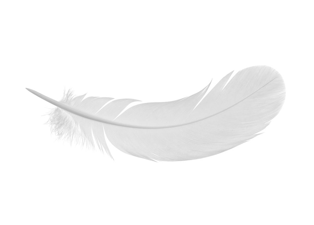 White feather meaning