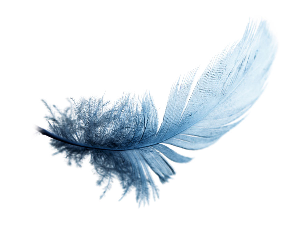 Blue feather meaning