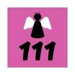 Significato dell'111