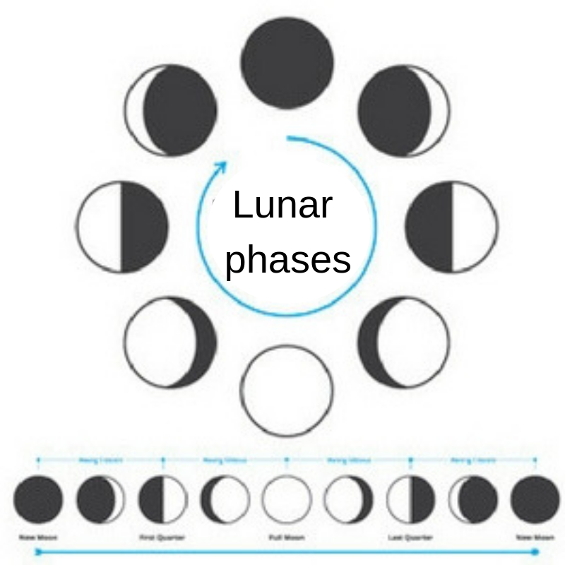 Lunar Calendar 2019: What Date Is The Full Moon?