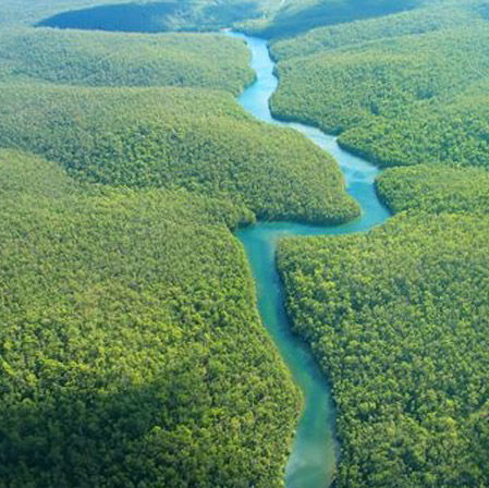 The blue waters of the Amazon river