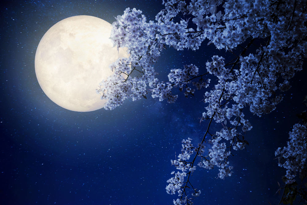 Full Moon January