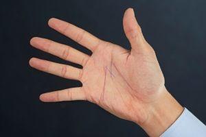 Linea M sul palmo della mano