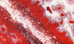 Sezione di diaspro rosso