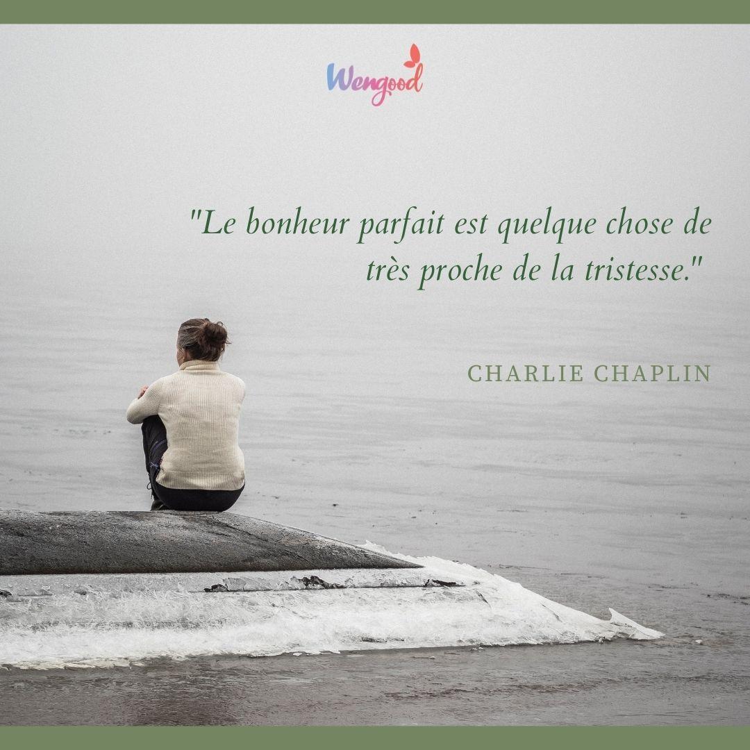 """""""Le bonheur parfait est quelque chose de très proche de la tristesse."""" Charlie Chaplin"""