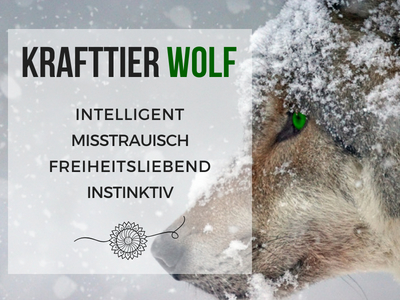 Krafttier Wolf: Eigenschaften