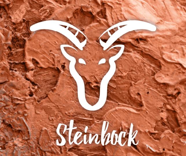 partnerhoroskop steinbock fische 2019