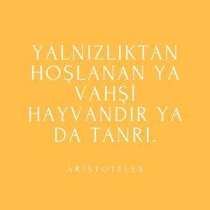 yalnız kalmak ile ilgili aristoteles sözü